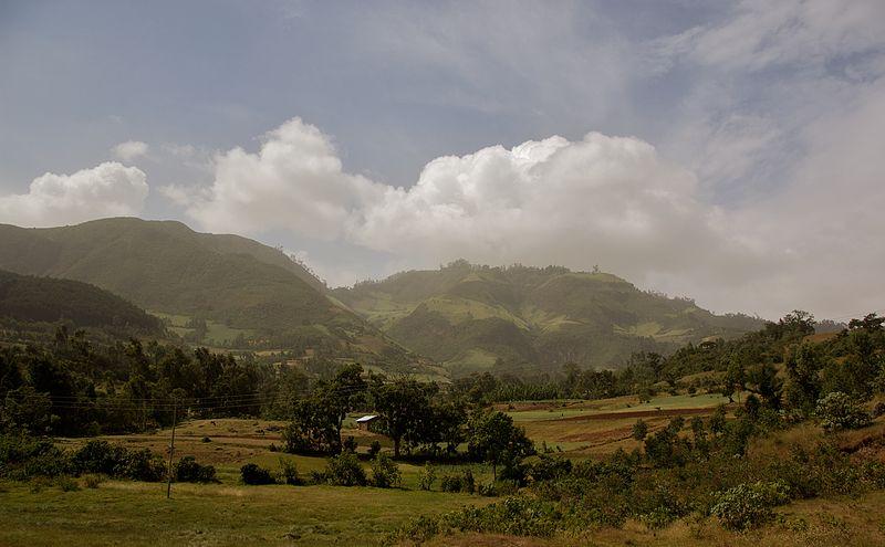 Asseco wchodzi do Afryki, wdroży billing w Etiopii
