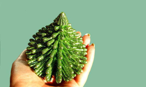 christmas-tree-1444041-640x380