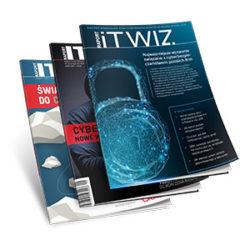 Raporty ITwiz