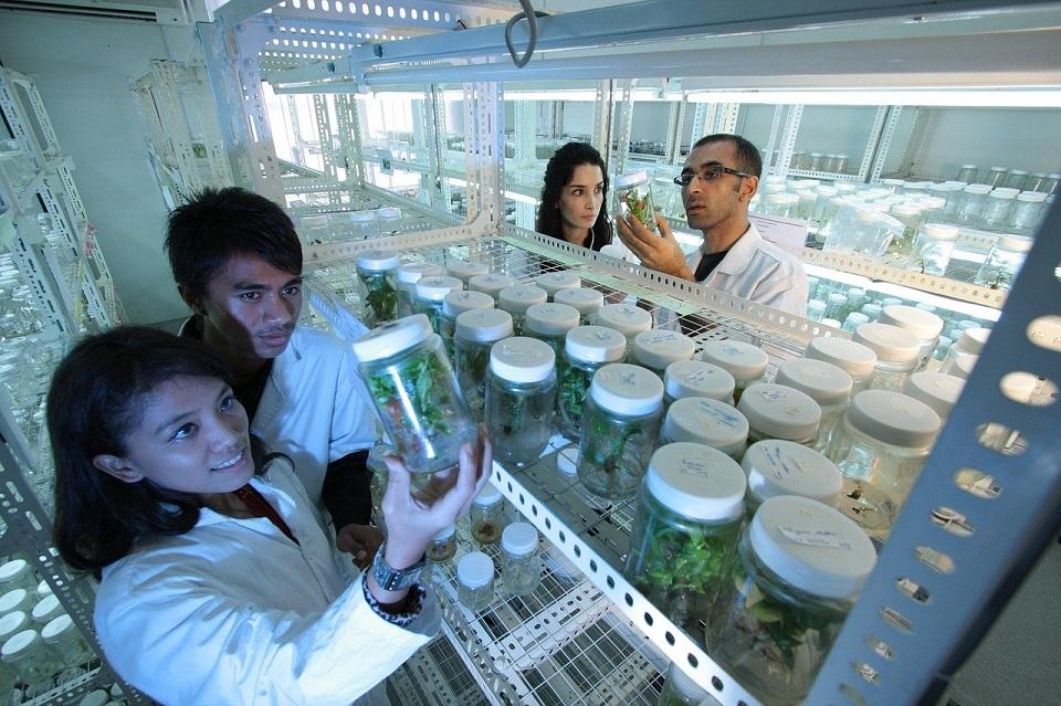 Startupy z branży chemicznej, biotechnologicznej i ICT z szansą na rozwój i dofinansowanie