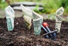 Zagraniczni inwestorzy venture capital zainwestują w polskie startupy