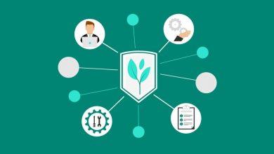 Green Software Foundation to nowa organizacja, która wesprze proekologiczne podejście do oprogramowania
